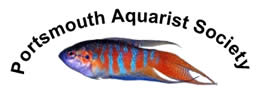 Portsmouth Aquarist Society Logo